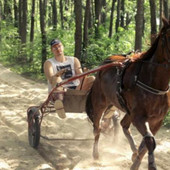 NIKOLA JOKIĆ KAO SAV OBIČAN SVET! Fotkali smo NBA asa u štali sa omiljenim konjem! Evo šta radi svakog jutra (FOTO+VIDEO)
