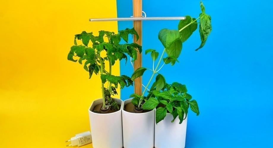 Prêt à Pousser: Schimmliger Indoor-Garten im Test