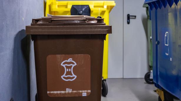 Kosze do segregacji śmieci w bloku