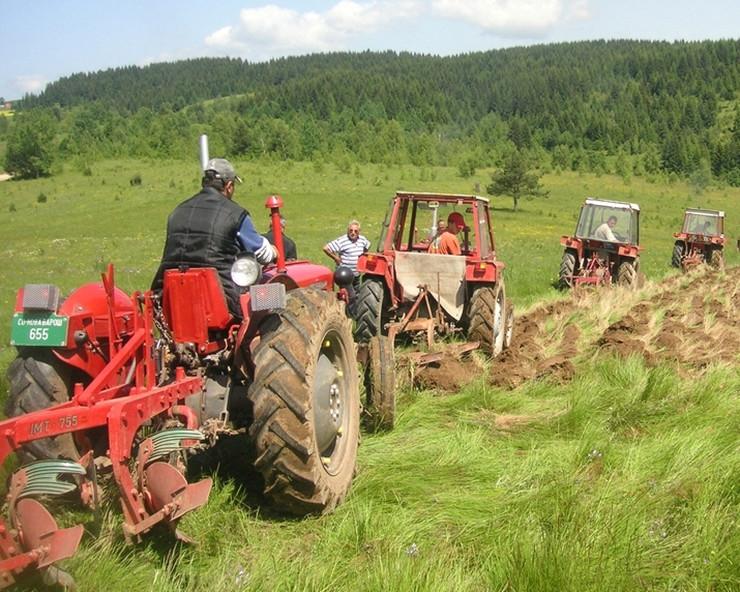 oranje, traktor, zemlja