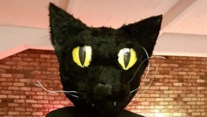 eben mačička videá