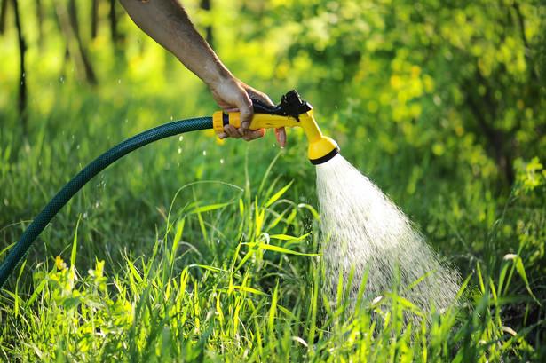 Podlewanie ogródka