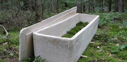 """To pierwszy taki pogrzeb. Zmarłą pochowano w """"żywej trumnie"""""""