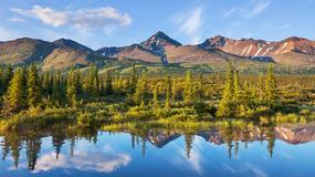 5 rzeczy, które warto wiedzieć o Alasce