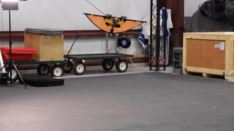 Dron dla wojska jak latającą wiewiórka