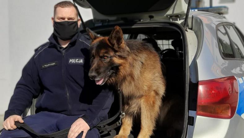 Młodszy aspirant Bartosz Trzuskawski i pies policyjny Alex