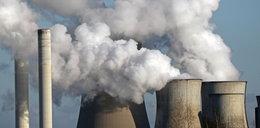 Niemieccy zieloni przeciw budowie elektrowni atomowej w Polsce