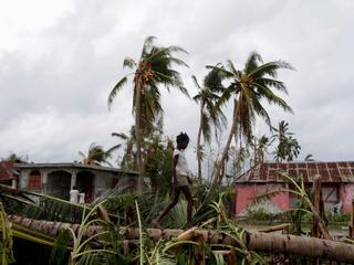 A girl walks on a tree damaged by Hurricane Matthew in Les Cayes
