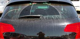 Miałeś rano brudny samochód? To coś przyleciało z Afryki!