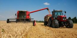 Polscy rolnicy to bogacze