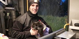 Koty dostały drugie życie. Uratowali je dzielni strażacy!