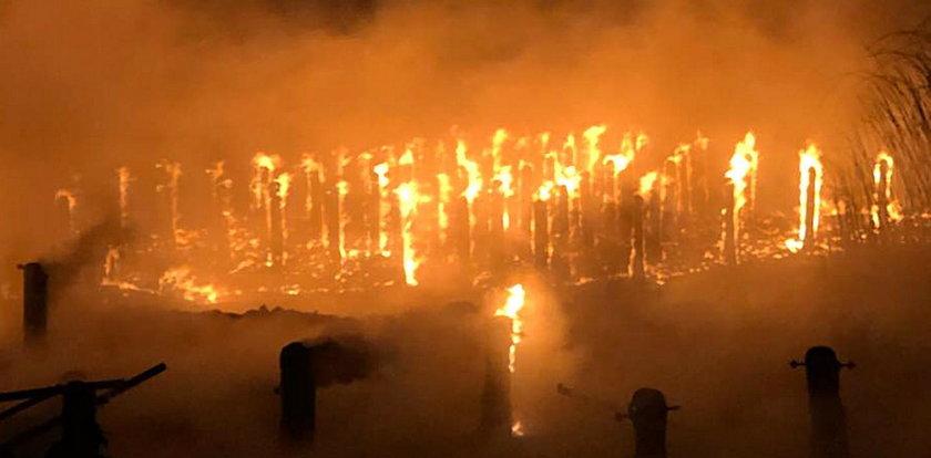 Potężny pożar w Trzebieży. Mieszkańcy załamani
