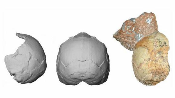 Rekonstrukcija potiljka: Lobanja pripada savremenom čoveku koji je verovatno živeo pre 210.000 godina
