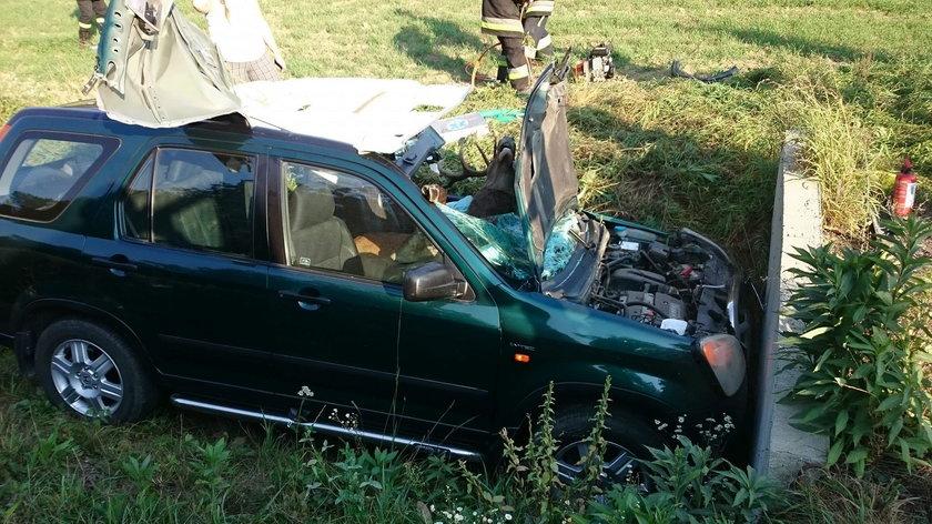 Zderzenie jelenia z autem w Olszynach. Zwierzę wylądowało w środku