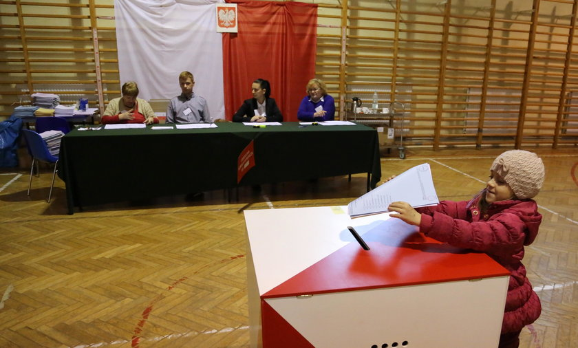 Policz głosy podczas referendum