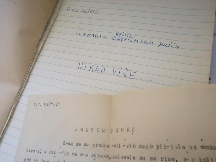 pavle vuisic rukopis