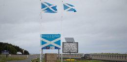 Zaskakujący skutek koronawirusa. Szkoci chcą niepodległości