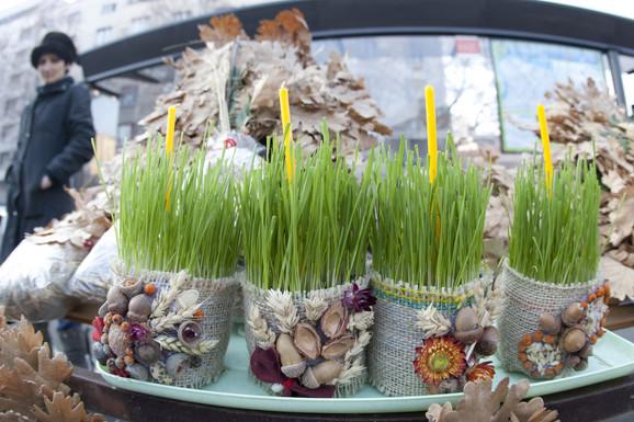 Dom krase simbolična grana hrasta i proklijalo žito