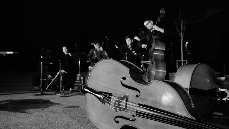 Kwartet kontrabasowy / fot. Maciek Suchorabski