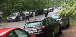 Parkingowy koszmar pod UCK