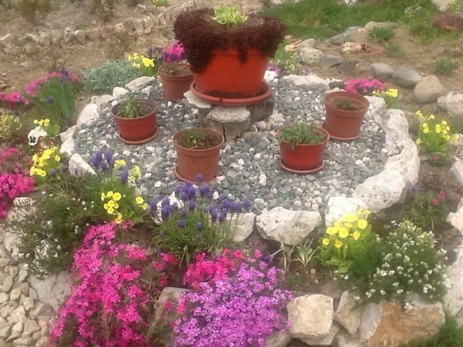 Cvetni vrt u dvorištu