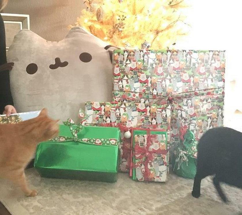 Miliarder zabawił się w św. Mikołaja. Wysłał prezent przypadkowej internautce