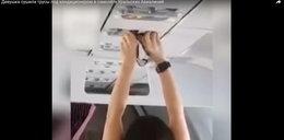 Co ona wyprawia? Pasażerka suszy majtki w samolocie