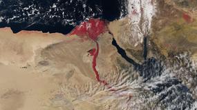 Nil przybrał czerwony kolor. Czy to kolejna egipska plaga?
