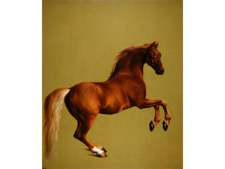 Whistlejacket, George Stubbs.