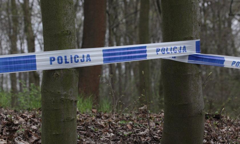 Porozrzucane kawałki ciała drwala w lesie. Co się tam działo?