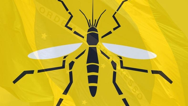 How to stay safe in a country with a Yellow Fever pandemic