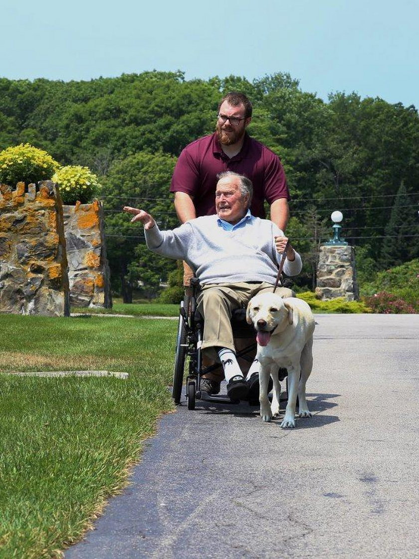 Pies George'a H.W. Busha czuwa przy trumnie zmarłego pana. Łzy same cisną się do oczu