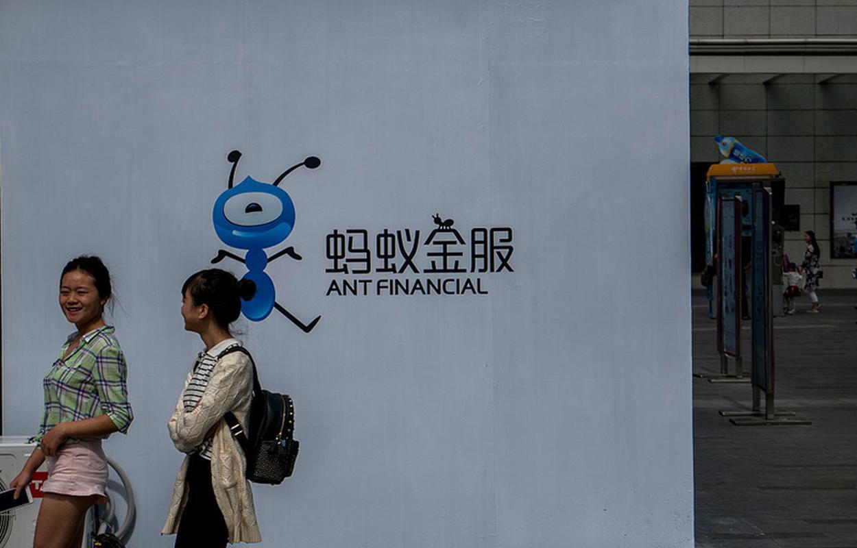 Logo Ant Financial z niebieską mrówką