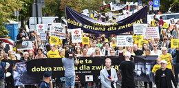 Wielka demonstracja w obronie zwierząt