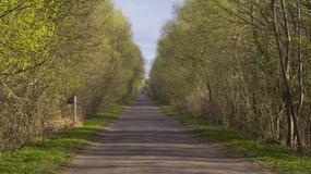 Biebrza - poprawa bezpieczeństwa i ochrona przyrody na Carskiej Drodze