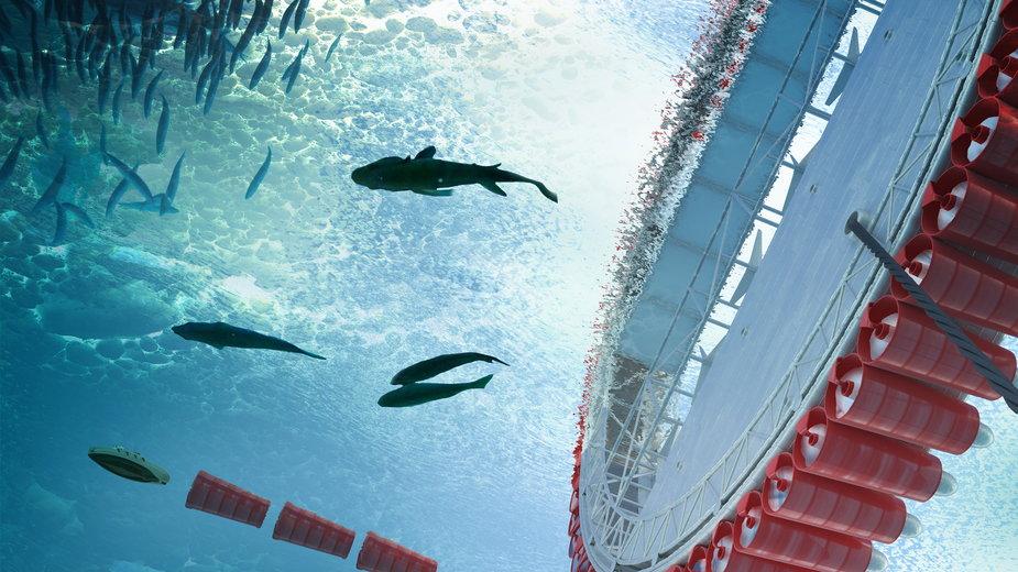 Polka wymyśliła, jak pozyskać pitną wodę z oceanu. Oto projekt Icemill