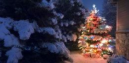 Życzenia świąteczne na Boże Narodzenie. Tradycyjne, zabawne i pomysłowe