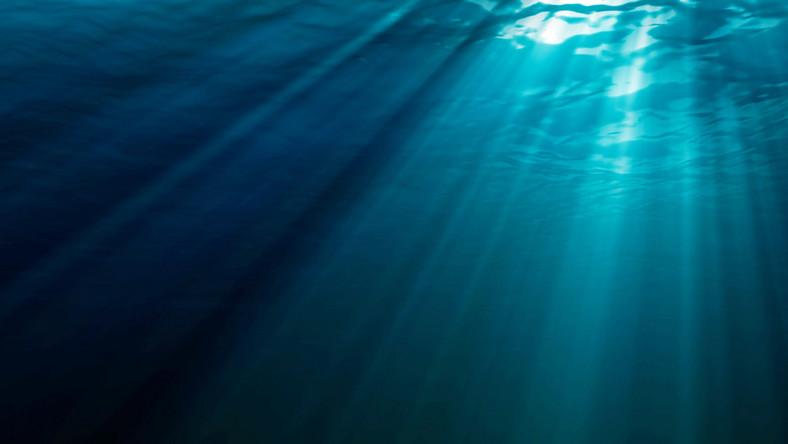 Prehistoryczne ryby widziały w kolorze