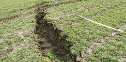 Rolnik z Marklowic: kopalnia zrujnowała mi pole