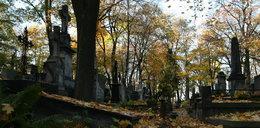 To ostatni tydzień ładnej jesieni