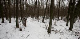 Nieprzytomne 13-latki w lesie! Omal nie doszło do tragedii!