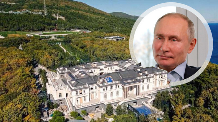 Vladimir Putin, palata