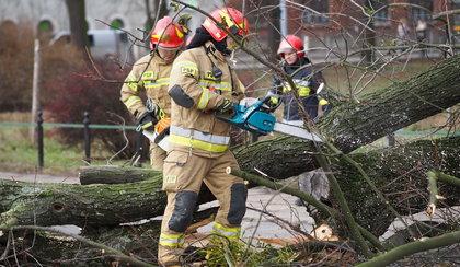 Pogodowy armagedon. Strażacy interweniują w związku z silnym wiatrem