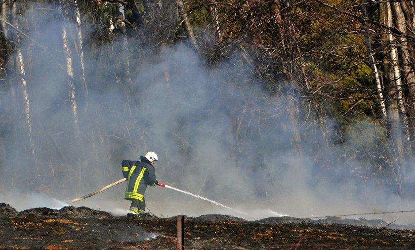 Tragedia na Podhalu. Strażacy znaleźli zwłoki w trawie