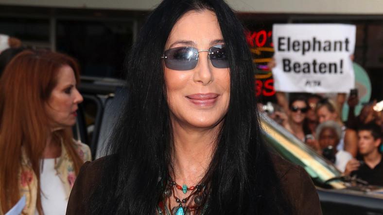 Cher wróci z nową płytą wiosną