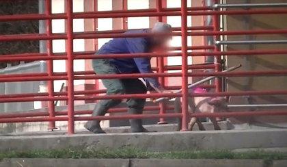 Tak pracownicy rzeźni w Witkowie traktują zwierzęta. Uwaga, drastyczne wideo