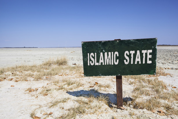"""Nawet jeśli Państwo Islamskie nie będzie już zajmowało przestrzeni na mapie, to przetrwa jako """"wirtualny kalifat"""" – środowisko podatnych na radykalizację osób kontaktujących się przez sieć. Te wszystkie zjawiska – w Syrii i Iraku oraz w cyberprzestrzeni – sprawiają, że minie jeszcze trochę czasu, zanim pożegnamy się z ISIS na zawsze."""