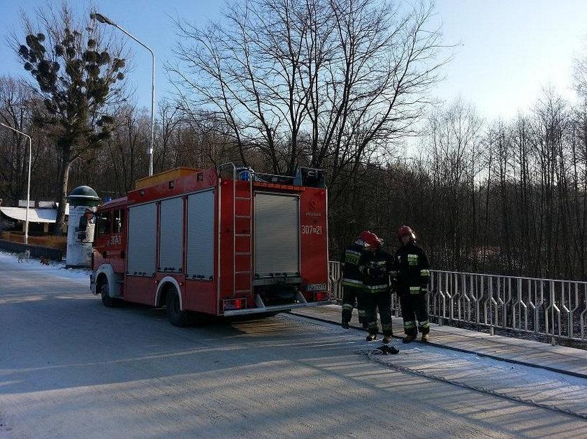 Straż pożarna podczas akcji ratowania kaczki