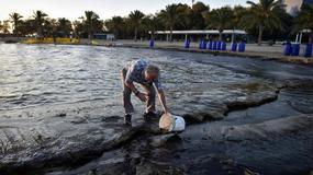 Grecja: potrzeba nawet dwóch lat na oczyszczenie Zatoki Sarońskiej