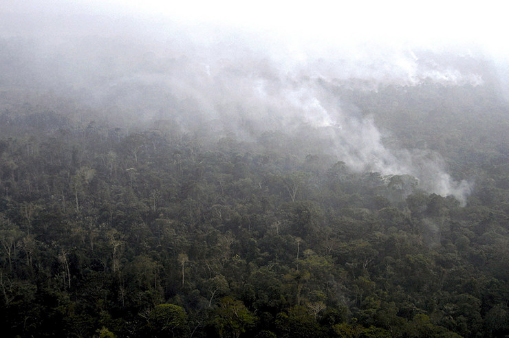 Amazonija, Brazil, Bolivija